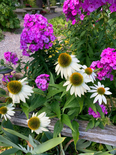 gallery/portage-inn-front-flowers